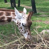 Photo taken at Zoo Schmiding by Sonja K. on 8/7/2014