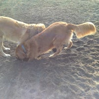 Photo taken at Westminster Dog Park by Sidney N. on 11/18/2013