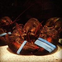 Photo taken at Red Lobster by Dakota W. on 9/25/2012