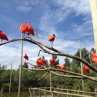 Photo taken at Gramado Zoo by Marcelo M. on 11/30/2012