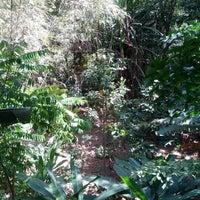 Photo taken at Tree Top Jungle Hut by Андрей Ш. on 2/5/2013