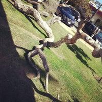 Photo taken at Pergola @ Palisades Park by Karlyn F. on 10/7/2012