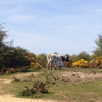 Photo taken at Greenham Common by Janette H. on 5/4/2016