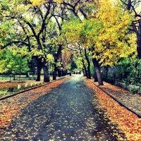 Photo taken at Борисова градина by Georgii C. on 10/15/2012