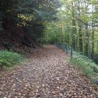 Photo taken at Greenway Bike Trail by cgnaughton on 10/11/2013