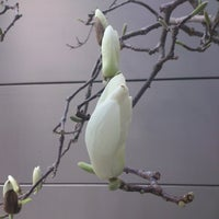 Photo taken at 京都文教大学 by Tasuku y. on 3/28/2014