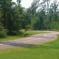 Photo taken at Fontainebleau State Park by DANIELLE R. on 6/12/2011