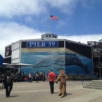 Photo taken at Pier 39 by Miä D. on 7/15/2013