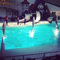 Photo taken at Marineland by Darrell M. on 7/28/2013