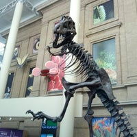 Photo taken at Denver Museum of Nature and Science by Terry K. on 7/21/2013