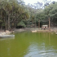 Photo taken at Bosque dos Jequitibás by Gabriel C. on 10/14/2012