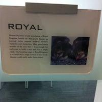 Das Foto wurde bei Penguin Books von Anna R. am 11/7/2012 aufgenommen
