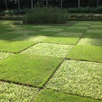 Photo taken at Parque Burle Marx by Milena G. on 11/10/2012