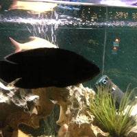 Photo taken at The Aquarium on 6th by Kacie S. on 12/21/2012