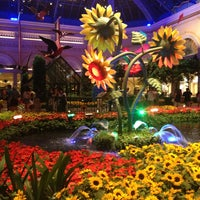 Photo taken at Bellagio Hotel & Casino by JENNIFER C. on 6/20/2013