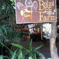 Photo taken at Bohol Bee Farm by Carmel J. on 4/6/2013