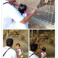 Photo taken at Mini Zoo Taman Teruntum by Ash H. on 5/12/2014