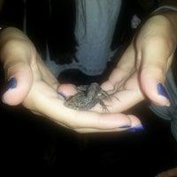 Photo taken at Lake Tarpon Resort by Lynda on 7/13/2014