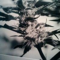 Photo taken at S.M.A.K.   Stedelijk Museum voor Actuele Kunst by Karel J. on 11/29/2012