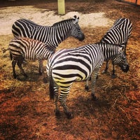 Photo taken at Burgers' Zoo by Julian W. on 1/27/2013