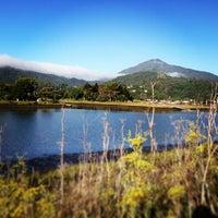 Photo taken at Corte Madera Creek by sarah p. on 7/13/2013