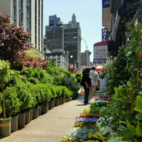Photo taken at Flower District by Doug P. on 5/20/2016
