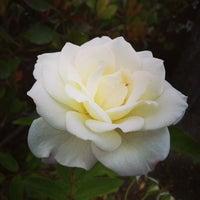 Photo taken at Camarillo Oaks by Angela M. on 8/9/2014