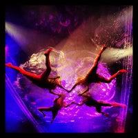 Photo taken at Daryl Roth Theatre (Fuerza Bruta Wayra) by Amanda on 5/31/2013