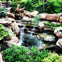 Photo taken at Dallas Arboretum and Botanical Garden by Joaquin G. on 7/16/2013