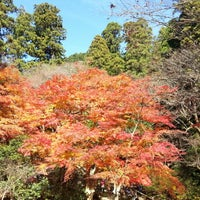Photo taken at 室生寺 by chronoske on 11/25/2012