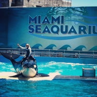 Photo taken at Miami Seaquarium by Stephania p. on 4/6/2013