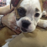Photo taken at Uncle Bill's Pet Centers West by Grace S. on 1/27/2013