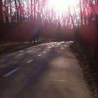 Photo taken at Koningsbos by Mazarine C. on 3/26/2013