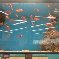 Photo taken at Petco by Jackie L. on 11/21/2012
