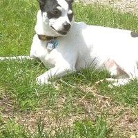 Photo taken at Howard Dog Park by Gloria (Glorioke) B. on 6/14/2013