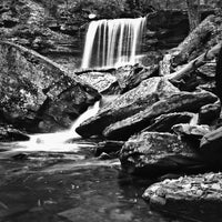Photo taken at Ricketts Glen State Park by Aaron C. on 10/17/2012