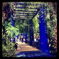 Photo taken at Jardin de Majorelle by Salim L. on 3/23/2013