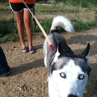 Photo taken at Humane Society of Boulder Valley by Jay I. on 7/14/2012