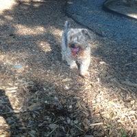 Photo taken at Monroe Place Dog Park by Sean E. on 7/25/2013
