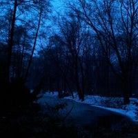 Das Foto wurde bei Neuer See von Katerina M. am 2/24/2013 aufgenommen