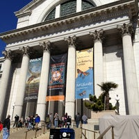Photo taken at National Museum of Natural History by Chelsea P. on 3/9/2013
