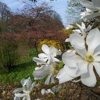 Photo taken at Belmonte Arboretum by Ron T. on 4/22/2013