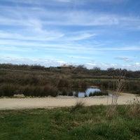 Photo taken at Parc Ornitologique du Teich by Véronique V. on 3/8/2013