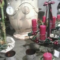Photo taken at Lederleitner by Daniel P. on 12/2/2012