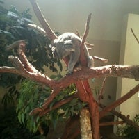 Photo taken at Riverbanks Zoo And Gardens by Ashley H. on 5/24/2012
