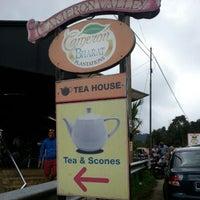 Photo taken at Cameron Bharat Tea Valley by Anna Z. on 12/30/2012
