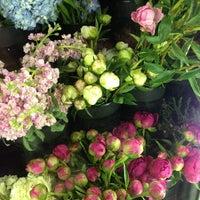 Photo taken at Alisan Florist by astami on 6/6/2013