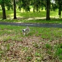 Photo taken at Tuckerman Hall Dog Run by Garry E. on 5/24/2016