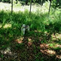 Photo taken at Tuckerman Hall Dog Run by Garry E. on 6/7/2016