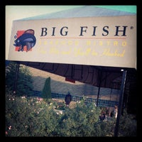 Big fish fairlane town center dearborn mi for Big fish dearborn mi